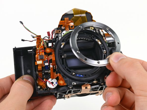 standard image 1